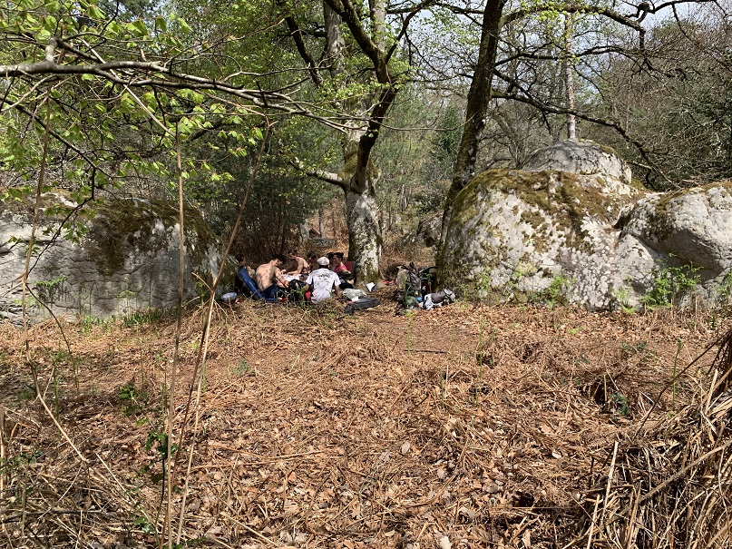 Picknicking in Fontainebleau with my awesome group