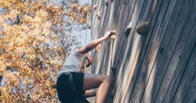 How to Build Your Own Climbing Wall in The Garden