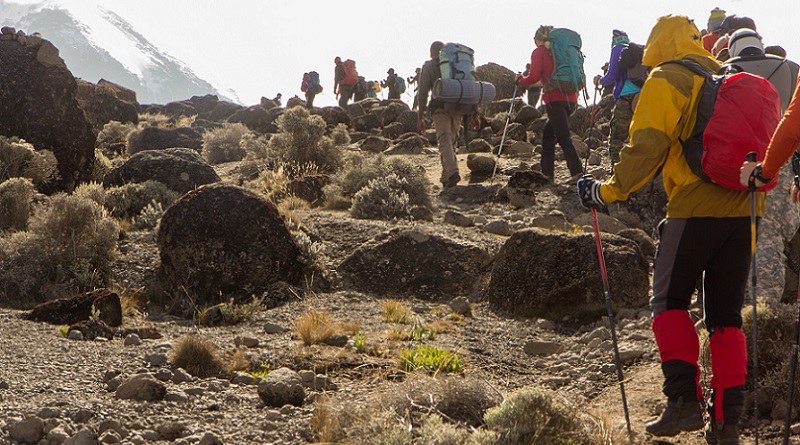 Machame Route, Whiskey, Kilimanjaro